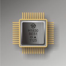 h1830be51_chip